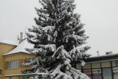 Sníh10