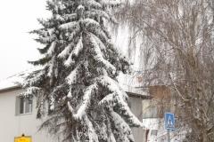 Sníh17