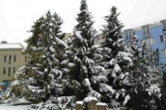 Sníh22