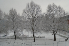 Sníh7