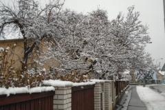 Sníh9
